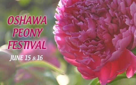 Oshawa's Peony Festival